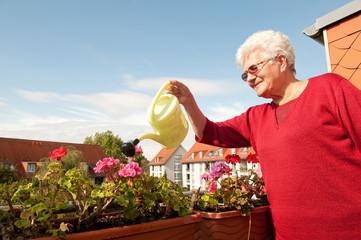 seniorin gießt Blumen