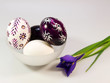 Hand painted easter eggs with iris
