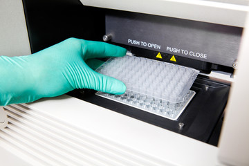 Green gloves, Thermal PCR cycler, DNA copy, wide