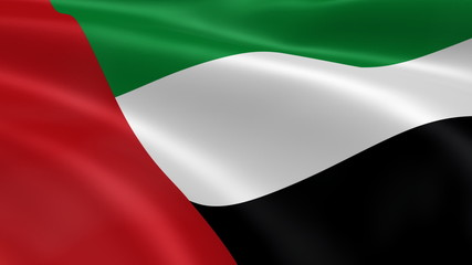 Emirati flag in the wind