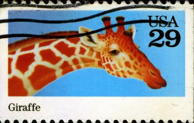 Giraffe. Us Postage.