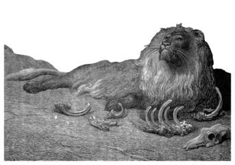 Lion Repu