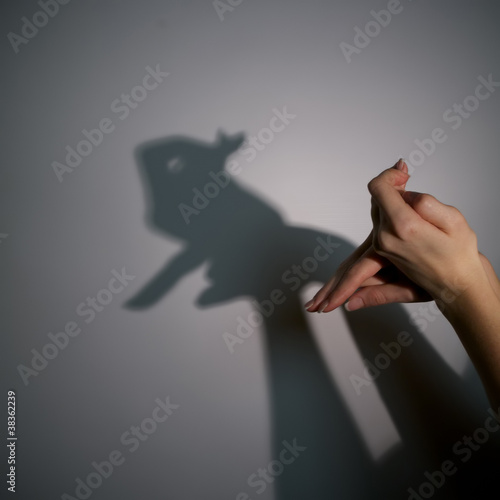 silhouette shadow of rabbit