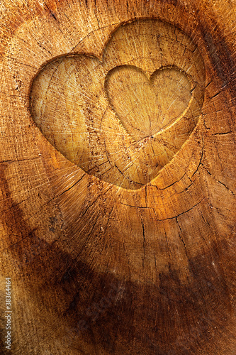 Kocha tekst na drewnianym tle