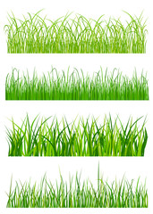 Green grass elements and patterns