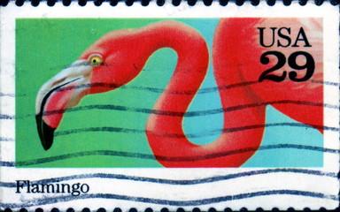 Flamingo. US Postage.