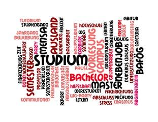 Pinke Wortwolke zum Thema Studium