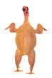 raw full length chicken lying