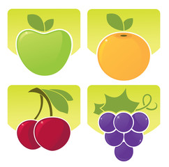 vector collection of fresh fruits and berries