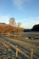 paysage en hiver.