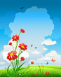 Summer natural background with flowers and blue sky