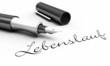 Lebenslauf - Stift Konzept