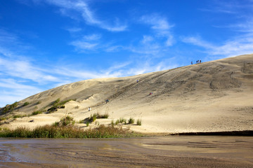 Dune Boarding at 90 Mile Beach on North Island
