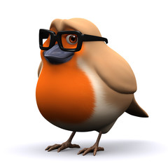 3d Robin looking studious in a pair of reading glasses