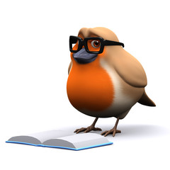 3d Robin reads a good book