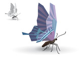 Butterfly stylized polygonal model. Eps10 vector poster