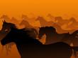 Vector :wild herd of horse in haze.
