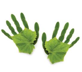 art greenpeace spring background Ecological symbol  hand of natu