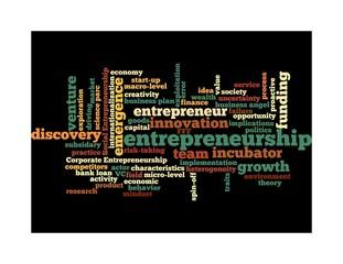 The entrepreneurship domain