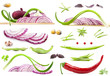 Collection of vegetables on a white background