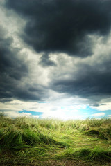 heavy storm clouds over a green grass field