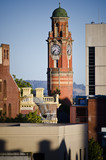 Cityscape and clock tower, Launceston, Tasmania, Australia.