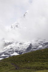 Cloud covering North Face of the Eiger