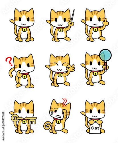 Cat-set