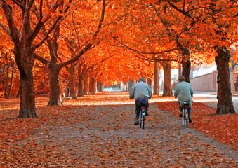 2 Radfahrer im Herbst