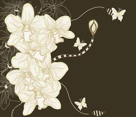 composizione di orchidee su sfondo scuro