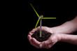 plant textured wind turbine in hands