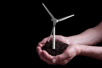 wind turbine growing