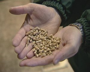 Hand hold wood pellets granules for burning organic fuel