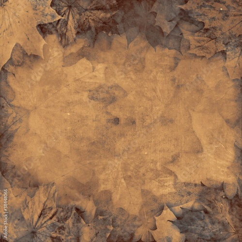 Old leaves sepia vintage autumn background