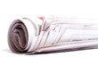 Rolled up newspaper.