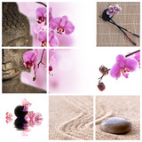 Fototapety Collage Bouddha zen orchidée rose