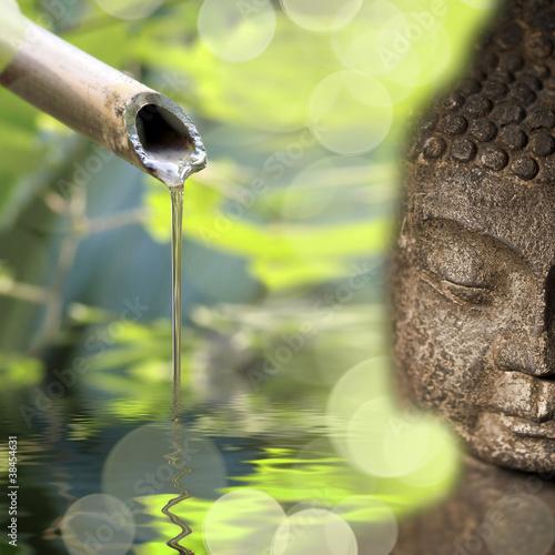 Fototapeten,zen,buddhas,spring flower,bambus