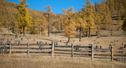 The fence enclosing livestock