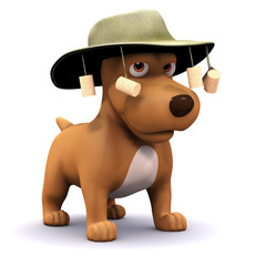 3d DOg wears an Australian hat with corks