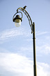 Glass lamp metal decor pole park lighting crow