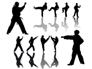 Gruppe Taekwondo-Schüler