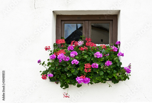 Bavarian Window