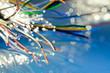 Leinwanddruck Bild - fili in rame con fibra ottica