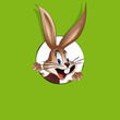 bunny looking through