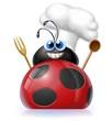 coccinella cuoco 2