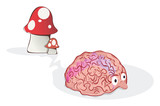 Mushroomed brain