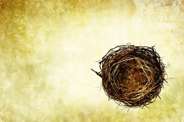 nest background