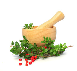 Ñowberry, mortar and pestle isolated - alternative medicine and