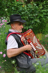 accordéoniste
