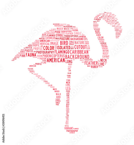 flamingo text clouds